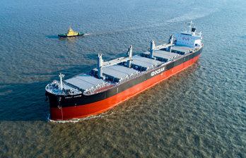 Semi-open Hatch Type Bulk Carrier HOLLY ARROW Delivered